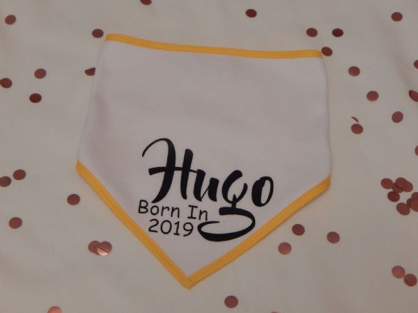 Born In (Year) Personalised Baby Bib Coloured Trim
